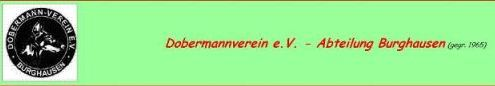 DV Burghausen