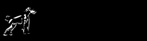 PlatinumCor_Logo